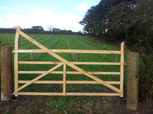 Gate For The Orchard - Truthwell Farm, St. Aubyns